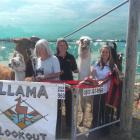 Sara Crane (left), of Governors Bay, Jacky Middleton (the handler), of Mount Lyford, and Robyn...