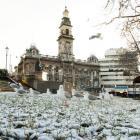 Seagulls brave a snowy Octagon.
