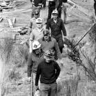 September 20, 1969: A team of miners and police head into the Fernhill mine near Brighton to...