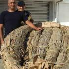 Shane (left) and Rangi Te Maiharoa with the mokihi (reed boat) that will be sailed down the...