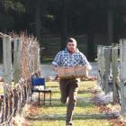 Simon Gourley, of Two Paddocks vineyard, competes in the Hortsports section of the Young...