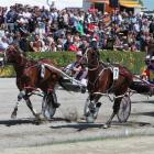 Stunin Cullen  (outer) has Ohoka Texas covered at the end of 3200m at Addington yesterday. Photo...