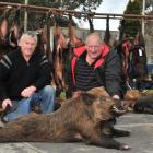 Taieri club pig hunters Kevin Meehan (left) and Brian Flett celebrate with their 65.4kg boar,...