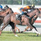 Tell a Tale wins the New Zealand Two Thousand Guineas (1600m) at Riccarton Park Racecourse on...