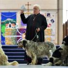 The Anglican Dean of Dunedin, the Rev Dr Trevor James, and his 8-year-old English setter, Mac,...