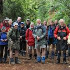 The Dunedin 60+ tramping club members  on their weekly tramp in Dunedin yesterday, as they...
