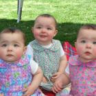 The Kelly triplets (from left) Haylee, Charlotte and Olivia turned 1 yesterday, and celebrated...