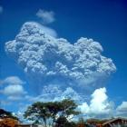The Mt Pinatubo eruption in 1991, the world's largest in recent times, was tiny compared with a ...