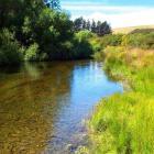 The Shag River, in East Otago, won the Grand Award  at the inaugural New Zealand River Awards...