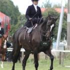 Tiffany Ottley and Three Kings competing at the Horse of the Year show in Hastings.