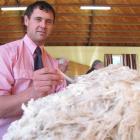 Tim Black, of Timaru, judges a merino fleece in preparation for the national Golden Fleece awards...