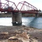 Trees have been felled beside the Red Bridge, near Luggate, to improve traffic sight lines and...