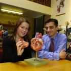 University of Otago graduate and summer scholarship winner Jessica Kelly examines a heart model...