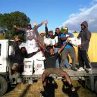 Vanuatuan men employed at Hinton's Orchard with rice their employer donated for the relief effort...