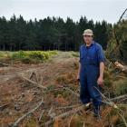 Waikouaiti resident Dylan Neill is unhappy after contractors cut down trees in an area different ...