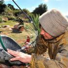 Waitati artist Tania Turei sculpts a piece of bluestone (front) while Titahi Bay artist Davey...