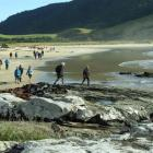 Walkers start the trek to Papatowai from Purakaunui Bay during the 2013 Catlins Great Escape...