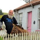 Wayne Richardson keeps about 60 chickens and three donkeys on his lifestyle block at Herbert....