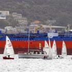 Yachts in the South Island secondary schools Sunburst regatta are dwarfed by the Torea at the oil...