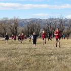 Years 1 and 2 girls race across a paddock in the Central Otago Small Schools Cross Country at...
