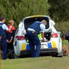 Police restrain a 14-year-old boy on the Silver Stream floodbank after police say the car he was...