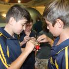 Tain Roberts, James Miller and Braydon  Gill (all 12), of Alexandra Primary School, recharge...