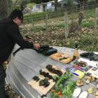Peter Langlands prepares to cook up the day's finds from a foraging expedition. Photos: supplied