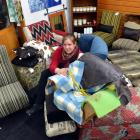Rebecca Bungard works on a child's armchair at Chairful Upholstery Studio in Clinton. PHOTO:...