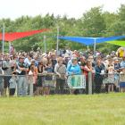 The crowd at the 2014 Omakau Races. Photo by Peter McIntosh.