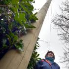Roslyn property owner Alfreda Clark is fighting Chorus after they put up a pole in her driveway...