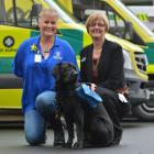 Assistance dog Pip with instructor Julie Hancox (left) and medical directorate nursing director...