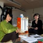 Auckland artist Xin Cheng and Dunedin Public Art Gallery curatorial intern Andrea Bell discuss...