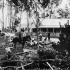 A farmyard scene in South Canterbury - on Mr Wilkinson's property at Geraldine. - Otago Witness, 2.8.1916.