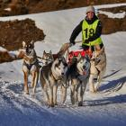 Kim Findlay, from Invercargill, races her six-dog team at the Wanaka Sled Dog Festival at the...