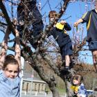 Alexandra Primary School pupil Jamie Knowles (9) dangles while (from left) James Gare (6,...