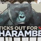 The 'Ticks out for Harambe' election hoarding on Queens Drive in Invercargill. Photo / Allison...