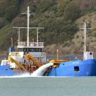 Port Otago's suction dredge New Era at work near the Otago harbour entrance last week. Photo:...