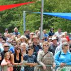 A section of the crowd at the 2014 Omakau races. Photo: Peter McIntosh.