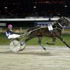 Pyramid Magic in full flight at Forbury Park in June. He is a leading chance in race 5 at Ascot...