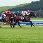 Gottagetmywoohoo finally breaks a two-year winning drought at Oamaru yesterday, courtesy of a...