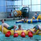 IMG 6386: The two new inflatable pool toys, George –The Caterpillar and Ringo which was enjoyed...