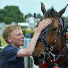 Ben Hope, son of Monbet's co-trainers, Greg and Nina Hope, pats the champion after his win in the...