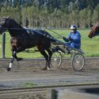 Co-trainer Mark Purdon drives New Zealand Cup favourite Lazarus during training at the All Stars...