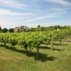 The Valentino Vineyards and Winery showcases American flavours in Long Grove, Illinois. PHOTO:...
