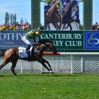 Jockey Michael Coleman punches the air in triumph as his mount, Ugo Foscolo, wins the New Zealand...