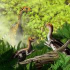Limusaurus are seen in this illustration handout: Image: Yu Chen/Handout via Reuters
