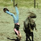 Ethan Jauncey, of Waiau, takes a dive from a horse at the Millers Flat Rodeo Camp in November....