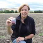 Wendy King is in the process of a large expansion at the Wynyard Estate saffron farm in the...