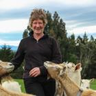 Shirley Johnstone tends to her prize-winning goats. Photo from ODT files.