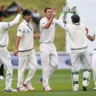 The Black Caps celebrate as Tim Southee takes the first wicket. Photo: Getty Images